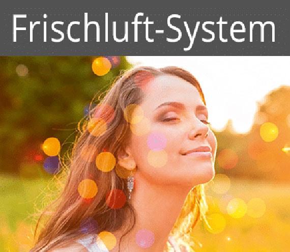frischluftsystem